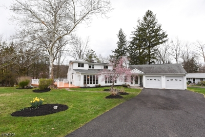 Bridgewater Twp. Single Family Home For Sale: 1006 Lakeview Dr