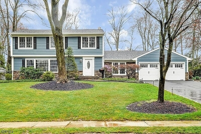 Florham Park Boro Single Family Home For Sale: 31 Murphy Cir