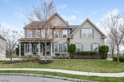 Clinton Twp. Single Family Home For Sale: 14 Arbor Ct