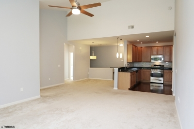 Hanover Condo/Townhouse For Sale: 1609 Brook Hollow Dr