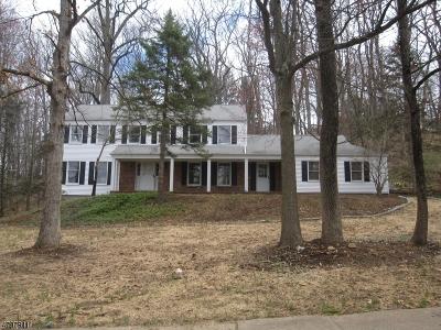Morris Twp. Single Family Home For Sale: 11 Laura Ln
