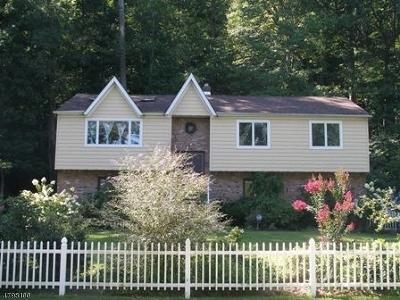 Roxbury Twp. Single Family Home For Sale: 66 Emmans Rd