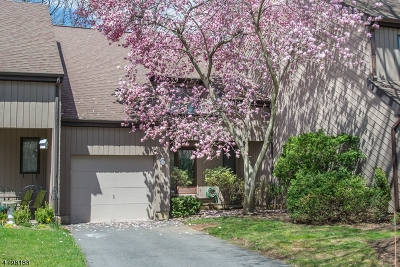 Morristown Town, Morris Twp. Condo/Townhouse For Sale: 30 Windmill Dr