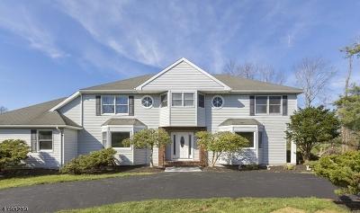 Branchburg Twp. Single Family Home For Sale: 518 Horizon Way