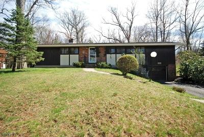 Bridgewater Twp. Single Family Home For Sale: 2150 Gilbride Rd