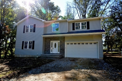 Mount Olive Twp. Single Family Home For Sale: 4 Hudson Rd