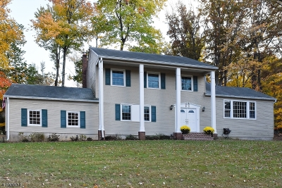 Randolph Twp. Rental For Rent: 68 Meadow Brook Rd