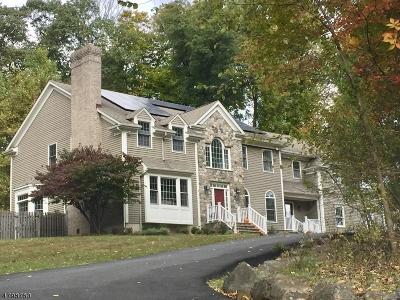 Mendham Twp. NJ Single Family Home For Sale: $939,000