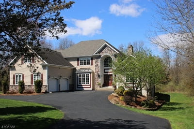 Basking Ridge Single Family Home For Sale: 248 Stonehouse Rd