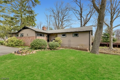Berkeley Heights Single Family Home For Sale: 82 Martins Ln