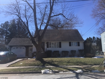 Woodland Park Single Family Home For Sale: 11 Lozrovich Pl