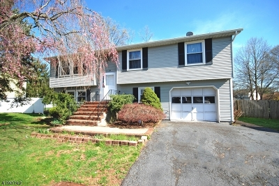 Bridgewater Twp. Single Family Home For Sale: 22 King Arthurs Ct