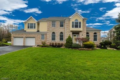 Edison Twp. Single Family Home For Sale: 256 Tingley Ln