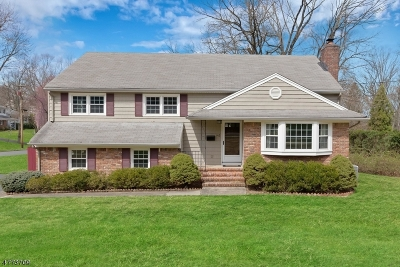 New Providence Single Family Home For Sale: 143 Southgate Rd