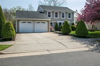 Edison Twp. Single Family Home For Sale: 24 Wintergreen Ave E