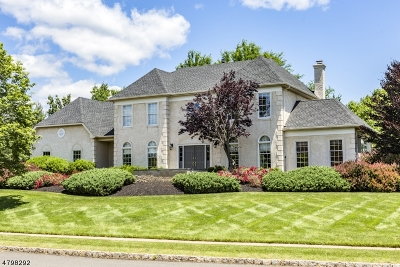 Montgomery Twp. Single Family Home For Sale: 74 Buckingham Dr