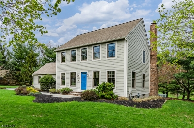 Montgomery Twp. Single Family Home For Sale: 50 Grist Mill Dr