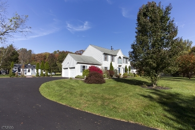 Roxbury Twp. Single Family Home For Sale: 165 Berkshire Valley Rd