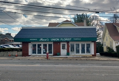 Union Twp. Commercial For Sale: 2162 Morris Ave #2162