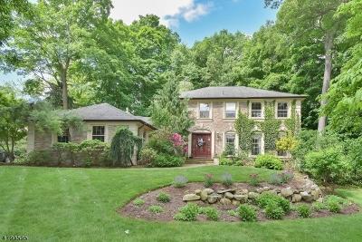 Wayne Twp. Single Family Home For Sale: 1045 Pines Lake Dr