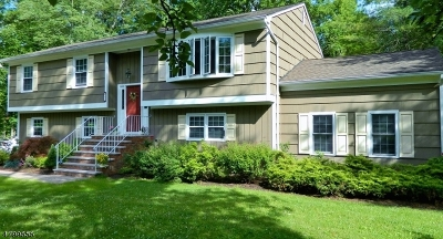 Long Hill Twp Single Family Home For Sale: 51 Milton Ave