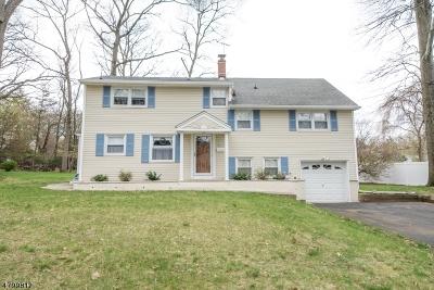 Oakland Boro Single Family Home For Sale: 24 Loyola Pl