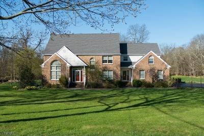 Readington Twp. Single Family Home For Sale: 95 Pleasant Run Rd