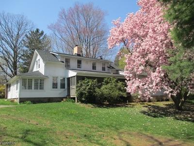 Roxbury Twp. Single Family Home For Sale: 14 Unneberg Ave