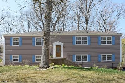 Mountain Lakes Boro Single Family Home For Sale: 49 Woodland Ave