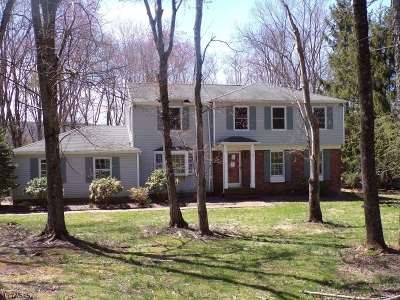 Clinton Twp. Single Family Home For Sale: 19 Victoria Drive