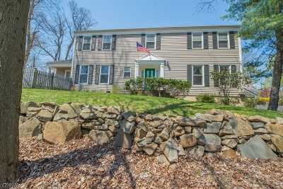 Berkeley Heights Single Family Home For Sale: 245 Mountain Ave