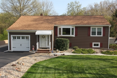 Bridgewater Twp. Single Family Home For Sale: 306 Garretson Rd