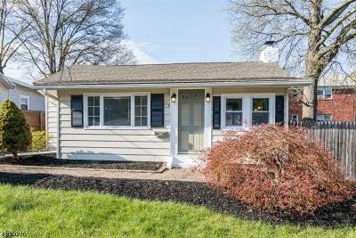 Parsippany-Troy Hills Twp. Single Family Home For Sale: 174 Hiawatha Blvd