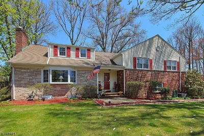 Westfield Town NJ Single Family Home For Sale: $855,000