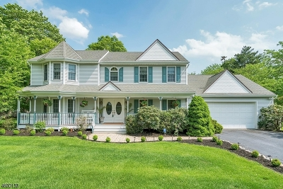 Bridgewater Twp. Single Family Home For Sale: 1386 Well Rd