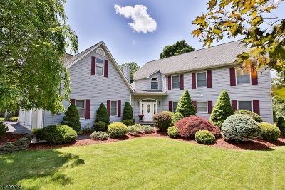 Montville Twp. Single Family Home For Sale: 27 Passaic Valley Rd