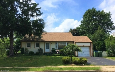 Edison Twp. Single Family Home For Sale: 27 Eardley Rd