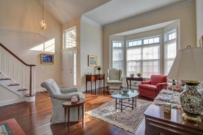 Readington Twp. Single Family Home For Sale: 63 Ditmar Blvd