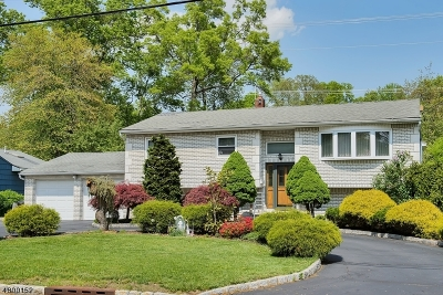 East Hanover Twp. NJ Single Family Home For Sale: $539,000