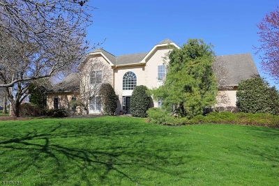 Montgomery Twp. Single Family Home For Sale: 5 Catbriar Ct