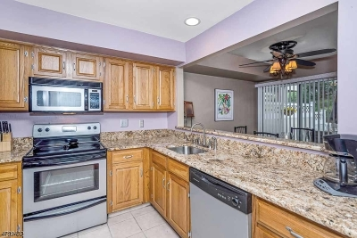 Bedminster Twp. Condo/Townhouse For Sale: 22 Academy Ct