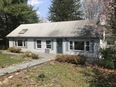 Passaic County Single Family Home For Sale: 19 Oliver Pl