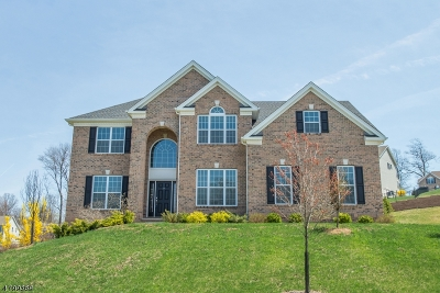 Mount Olive Twp. Single Family Home For Sale: 5 Ruggiero Way