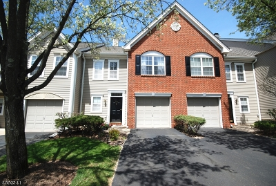 Bridgewater Twp. Condo/Townhouse For Sale: 1704 Stech Dr