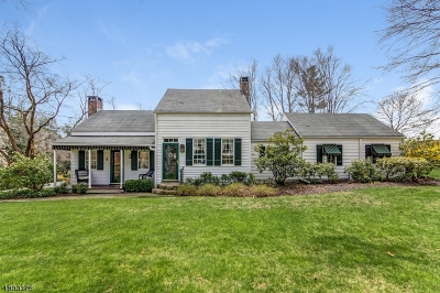 Bernards Twp., Bernardsville Boro Single Family Home For Sale: 201 Madisonville Rd