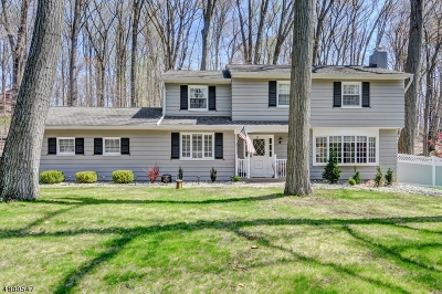 Raritan Twp. Single Family Home For Sale: 34 Cherryville Hollow Rd