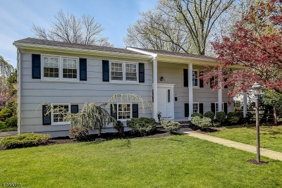 Millburn Twp. Single Family Home For Sale: 805 Ridgewood Rd