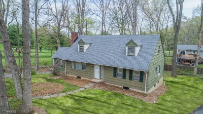 Parsippany Single Family Home For Sale: 8 Dogwood Ln