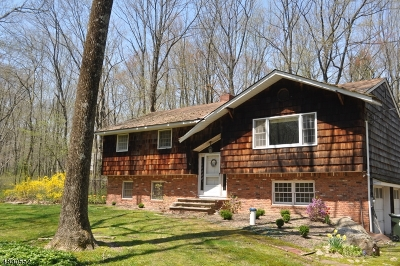 Mount Olive Twp. Single Family Home For Sale: 116 Lozier Rd