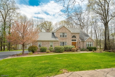 Roxbury Twp. Single Family Home For Sale: 1 Summit Ln